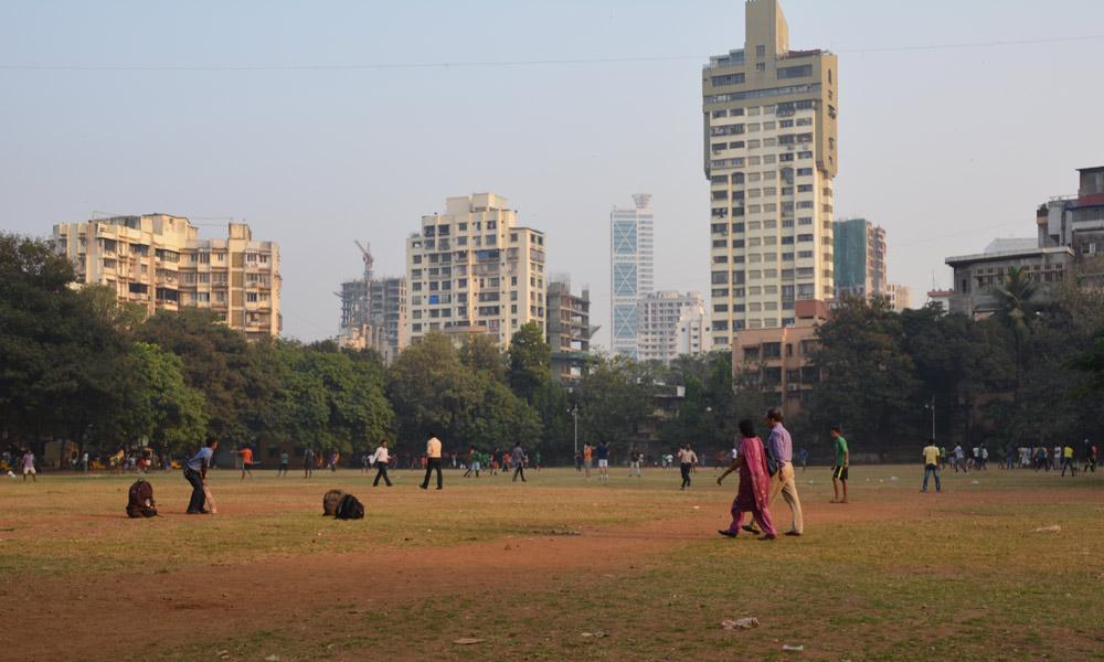 cricket-park-378