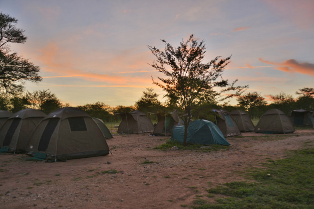 Morning at the campsite in the Serengeti.