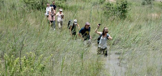 walking-through-water