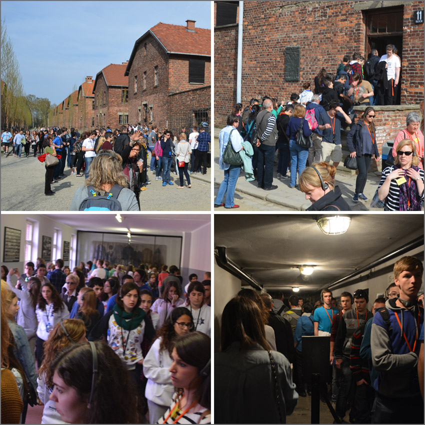 The crowds at the Auschwitz I museum.