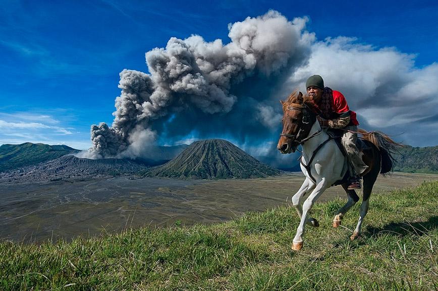 mount-bromo-horse