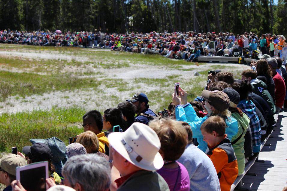 old-faithful-crowd